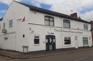 Emergency Vet Chesterfield Nights Weekends 24hrs Sunday Vets Now