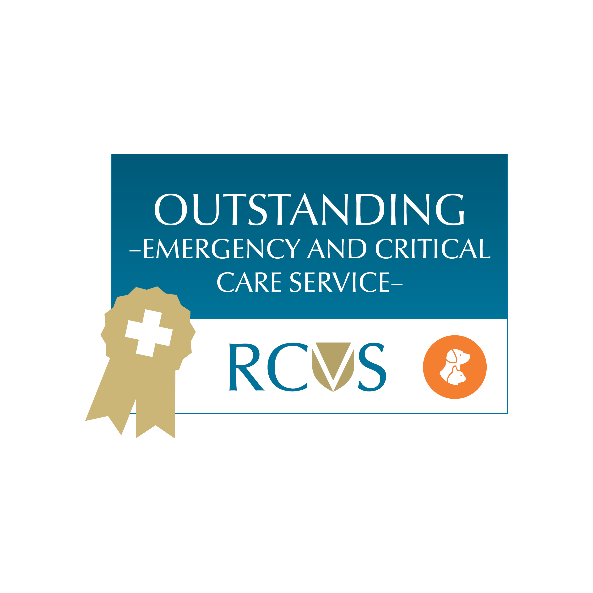 An image of RCVS Emergency & Critical Care Outstanding Award