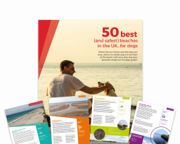 Image of Vets Now dog friendly beaches guide