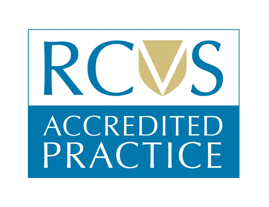 Image of RCVS Accreditation