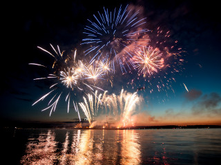 Image of fireworks for Vets Now article on cats and fireworks and how do fireworks affect cats
