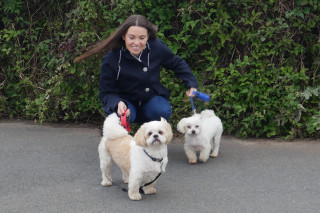 Image of two small dogs and owner for Vets Now fireworks and pets advice hub
