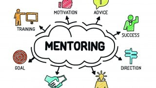 An image of a mentoring chart showing the different facets involved in mentoring for Vets Now article on mentoring