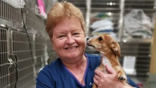 Why Caroline Went from Teaching To Helping Pets
